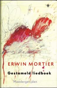 Mortier 5