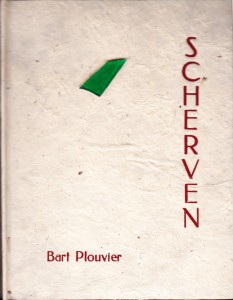 Plouvier 6