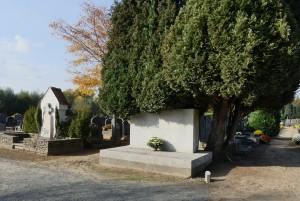 van-der-hallen-59d