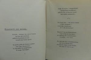 Bittremieux 2a